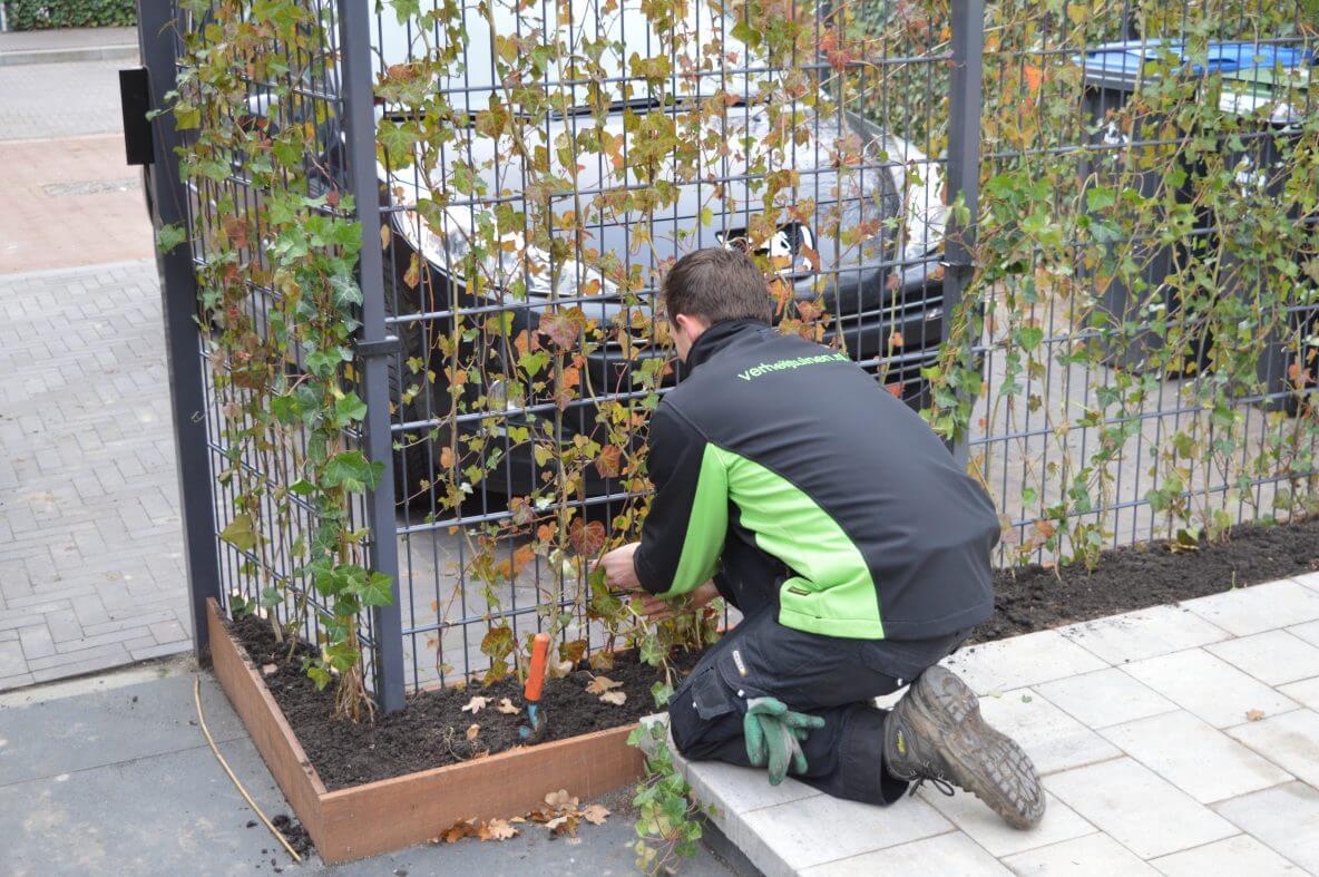 Tuinproject Meteren